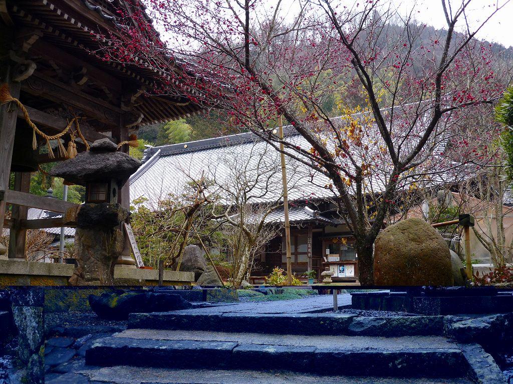 高照寺風景 4