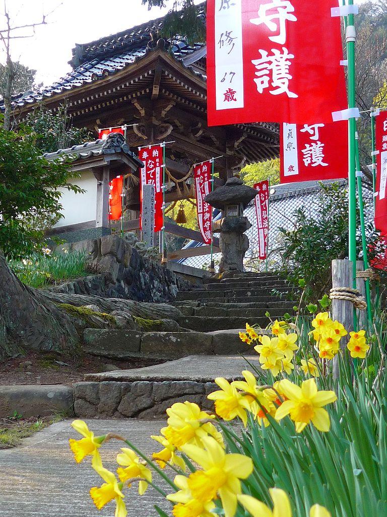 高照寺風景 19