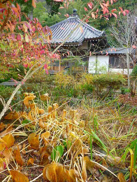 高照寺風景 70
