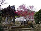 高照寺風景 10