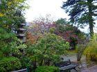 高照寺風景 37